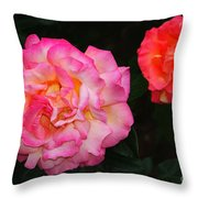 Huge Pink And White Rose...   # Throw Pillow