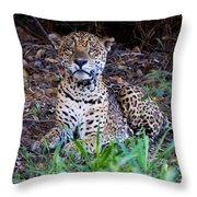 Hugo Waking 2 Throw Pillow