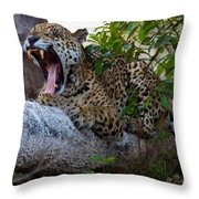 Hugo Waking 5 Throw Pillow