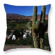 Humahuaca Argentina 2 Throw Pillow