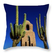 Humahuaca Argentina Throw Pillow