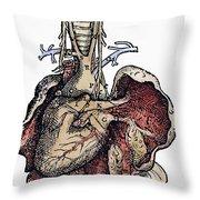 Human Heart, 1543 Throw Pillow
