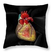 Human Heart On Black Velvet Throw Pillow