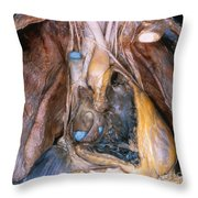 Human Heart Throw Pillow