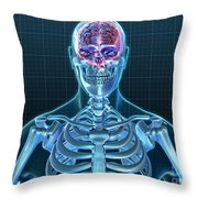 Human Skeleton And Brain, Artwork Throw Pillow