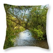 Humber River 2 Throw Pillow