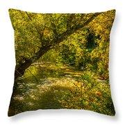 Humber River 5 Throw Pillow