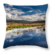 Humboldt Marshes In Spring Throw Pillow