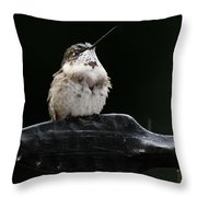 Hummer In The Rain II Throw Pillow