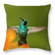Humming Along Throw Pillow