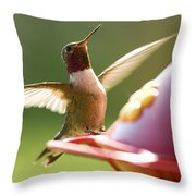 Humming Bird 2 Throw Pillow
