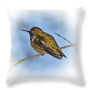Humming Bird And Snow 3 Throw Pillow