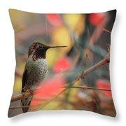 Humming Bird Christmas Throw Pillow
