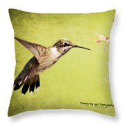 Humming Bird In Flight Throw Pillow