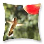 Hummingbird 2 Throw Pillow