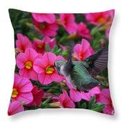 Hummingbird 3219 Throw Pillow
