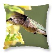 Hummingbird 3725 Throw Pillow