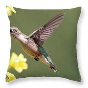Hummingbird 3731 Throw Pillow