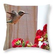 Hummingbird 4533 Throw Pillow