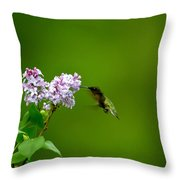 Hummingbird And Lilac Throw Pillow