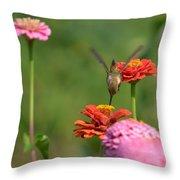 Hummingbird And Zinnias Throw Pillow