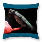 Hummingbird Anna's Eating On Perch Throw Pillow