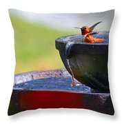Hummingbird Bath Throw Pillow