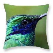 Hummingbird Closeup Throw Pillow