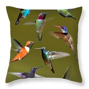 Hummingbird Collage Throw Pillow