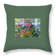 Hummingbird Dance Throw Pillow