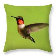 Hummingbird Defender Throw Pillow