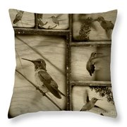 Hummingbird Family Portraits Throw Pillow