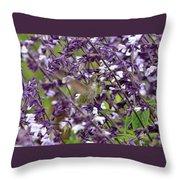 Hummingbird Flowers Throw Pillow