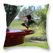 Hummingbird Flying To The Feeder Throw Pillow
