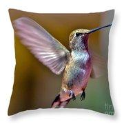 Hummingbird Frolic Throw Pillow