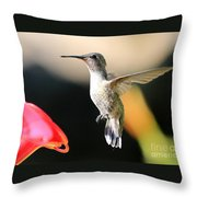 Hummingbird Happiness Throw Pillow