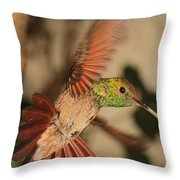 Hummingbird I Throw Pillow