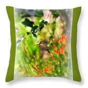 Hummingbird In The Daylilies Throw Pillow