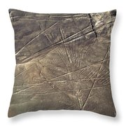 Condor In The Desert Throw Pillow