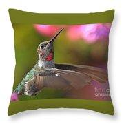 Hummingbird Intensity Throw Pillow