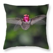 Hummingbird Male Anna's Flapping His Wings Throw Pillow