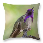 Hummingbird Male Costa Throw Pillow
