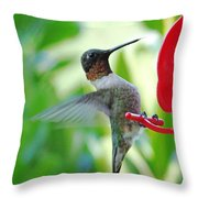 Hummingbird Male Ruby Throated  Throw Pillow