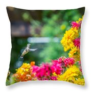 Hummingbird Moment Throw Pillow