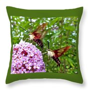 Hummingbird Moths Throw Pillow