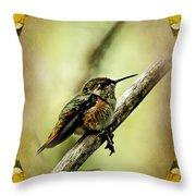 Hummingbird Noveau Throw Pillow