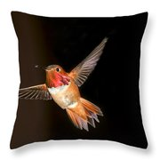 Hummingbird On Black Throw Pillow