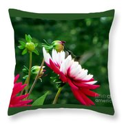 Happy Hummer Throw Pillow
