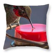 Hummingbird On Feeder Throw Pillow