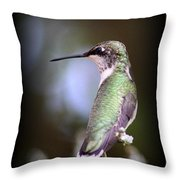 Hummingbird Photo - Side View Throw Pillow